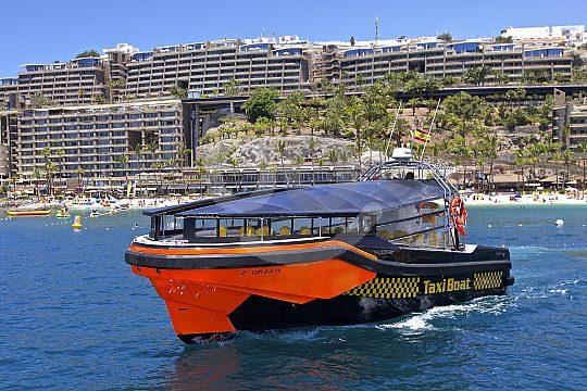 Modernes Boot zum Wale und Delfine beobachten Gran Canaria