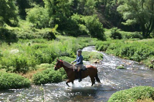 In der Maremma durch den Fluss reiten