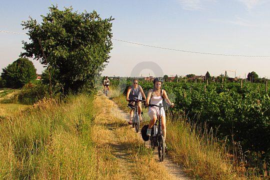 Geführte Radtour mit Guide ab Verona