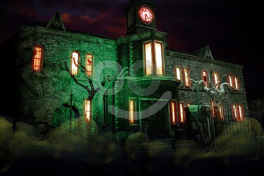 Asylum Kino