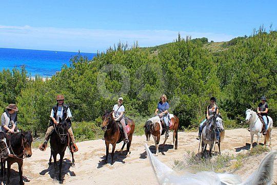 Pferde reiten auf Mallorca
