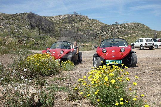 Mit dem Buggy in Mallorca