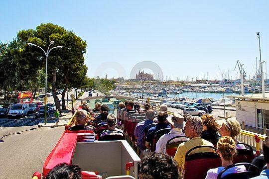 Aussicht von dem Bus Mallorca