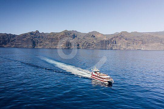 Ausflugsschiff Teneriffa Delfine