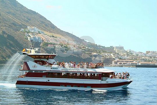 Glasbodenboot Teneriffa
