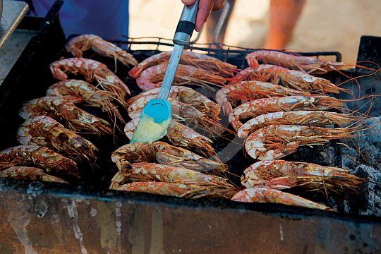 Gutes Essen auf der Algarve Katamaran Fahrt