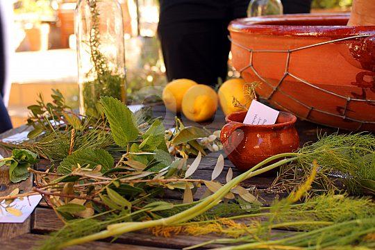 Kräuter für tradionellen Hierbas