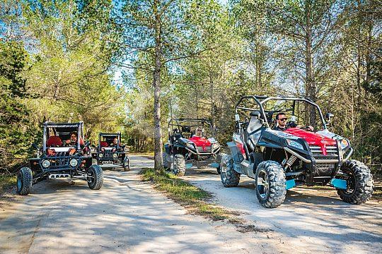 San Antonio Buggytour