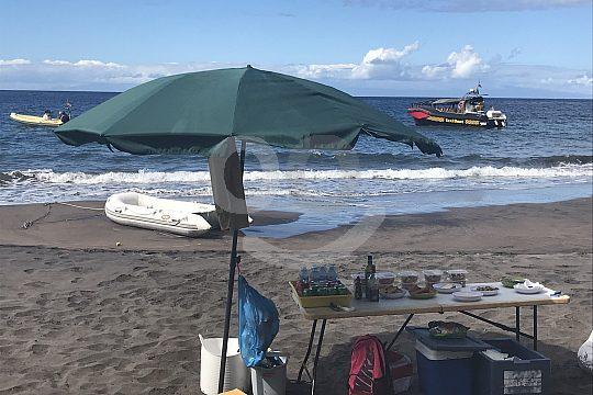 Picknick am Strand bei Delfin- und Walbeobachtung