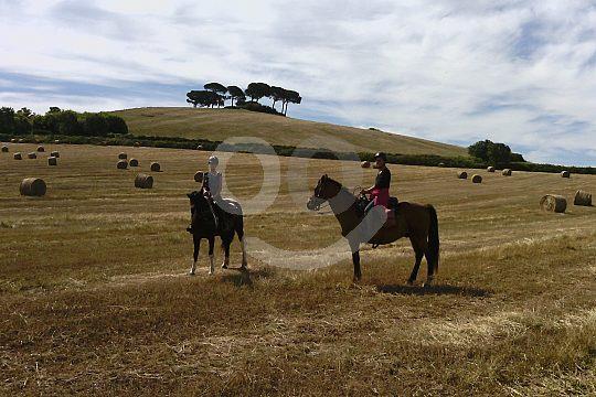 Tagesritt über die Felder der Toskana