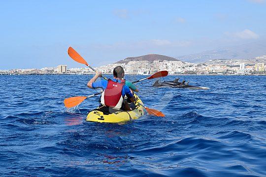 Teneriffa Kayak Tour