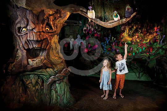 Kinder in dem Wald