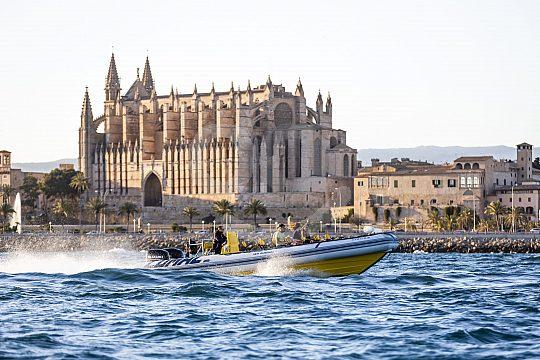 Speedboot vor der Palma Kathedrale