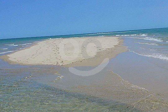 Eine Bootstour ab Olhão an der Algarve unternehmen
