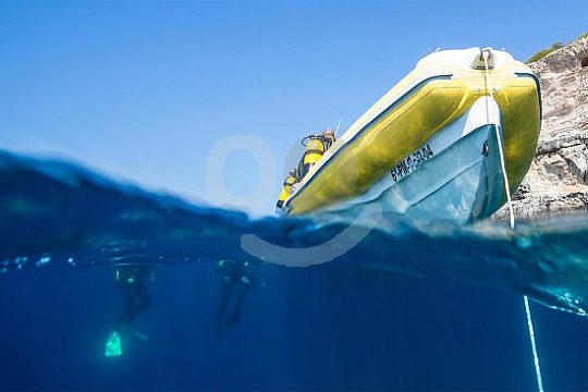Tauchfahrt mit dem Boot auf Mallorca