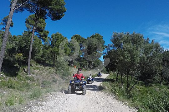 Alcudia Quad Tour