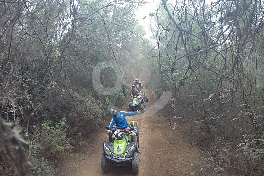 Quad Mallorca Tour