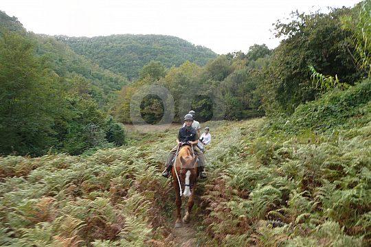 Reiterferien in der Toskana Maremma