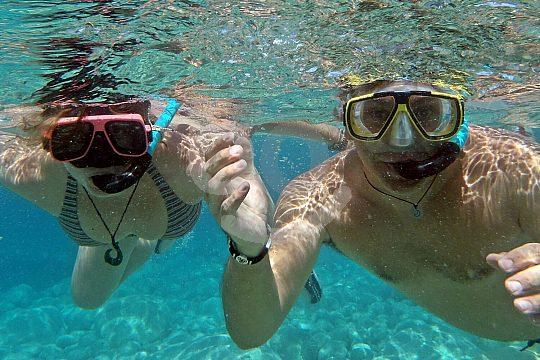 Schwimmen und Schnorcheln auf der Speedboot Tour