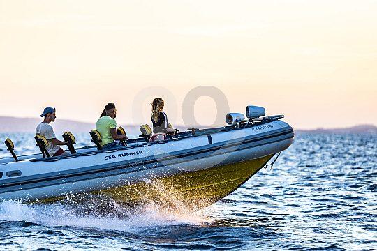 Ausflug im Speed Boat