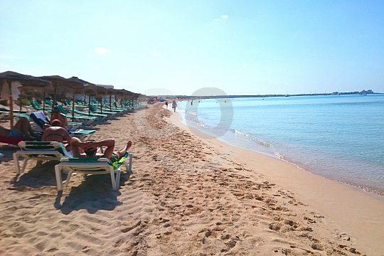 Strand Ausflug in Mallorca