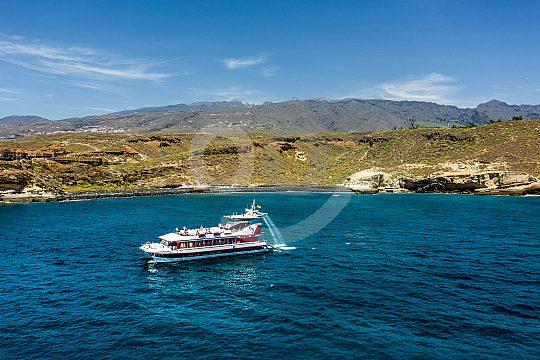 Teneriffas Südküste per Boot entdecken