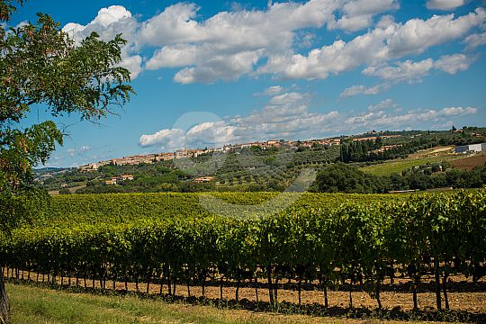 Toskanische Landschaft mit Fahrrad