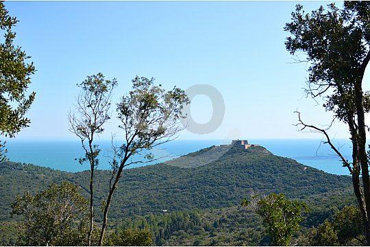 Wandern auf der Insel Giannutri in der Toskana