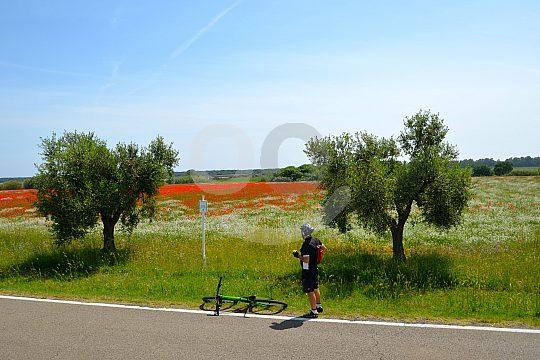 Fahrradfahren ab Grosseto in Italien