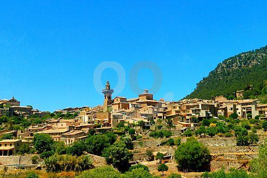 Valldemossa Tour ab Paguera