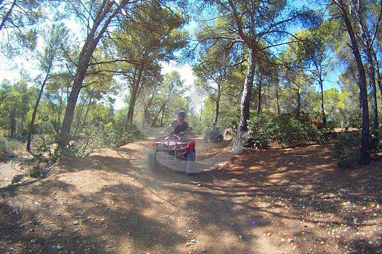 Mit dem Quad durch den Wald Mallorcas