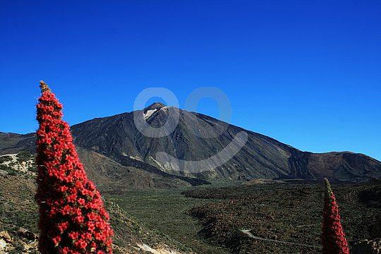 Wandertour zum Pico del Teide auf Teneriffa