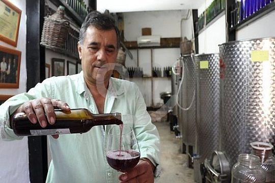 Weinverkostung in Fuerteventura