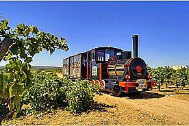 Wine Express Zug Binissalem