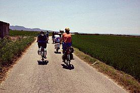 Fahrradtour Valencia zum Albufera Naturpark