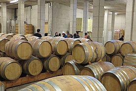 Weinkeller Scala Dei DOC Priorat
