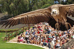 Eintritt Rancho Texas Lanzarote Park