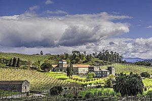 Wein-Touren in Galicien