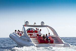 ab Playa de las Americas auf Speedboot Tour