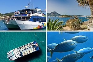 """Bootstour zur Dracheninsel """"1 Tag auf dem Meer"""" im Südwesten von Mallorca"""
