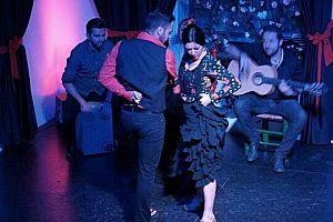 Leidenschaftliche Flamenco Show in Granada - Flamenco authentisch erleben