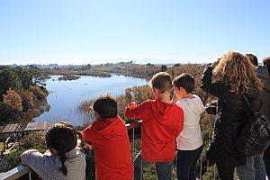 Albufera Naturpark Valencia: geführte Jeep Safari mit Bootstour
