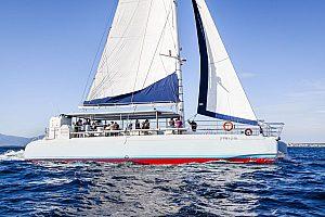 Auf Mallorca segeln mit Katamaran