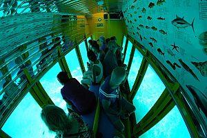 Unterwasser-Abenteuer im Semi-U-Boot Kreta