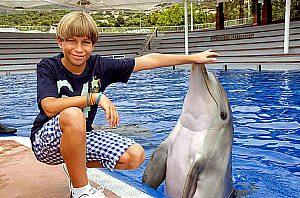 junge mit delfin auf der marineland tour mallorca