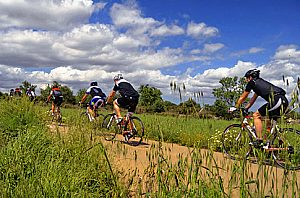 Profi-Fahrrad mieten im Süden von Mallorca