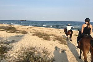 mit den Pferden am Strand in Andalusien