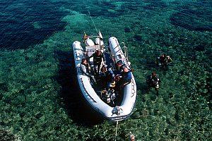 Schnorcheltour zur Dracheninsel: Von Mallorca aus ab San Telmo in die Unterwasserwelt eintauchen