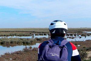 Spannende Fahrradtour durch den Doñana Naturpark ab Sanlúcar de Barrameda