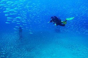 Schnuppertauchgang auf Lanzarote ab Playa Blanca